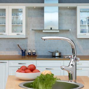 Смесители для кухни с двойным изливом